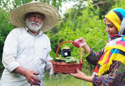 کشاورزی حمایت شونده به وسیله جامعه (مشارکتی)